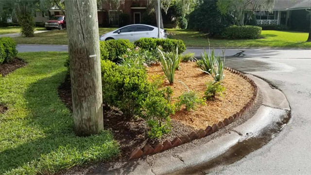 landscaping ideas 2