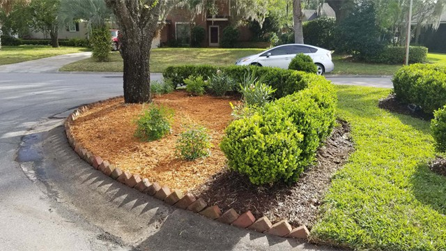 landscaping ideas 3