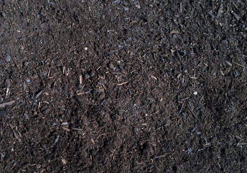 Wild Earth Compost with Manure