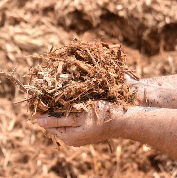 Delivery Available Cypress Mulch